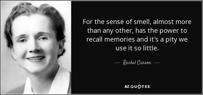 For the sense of smell, almost more than any other, has the power to recall memories and it's a pity we use it so little. - Rachel Carson