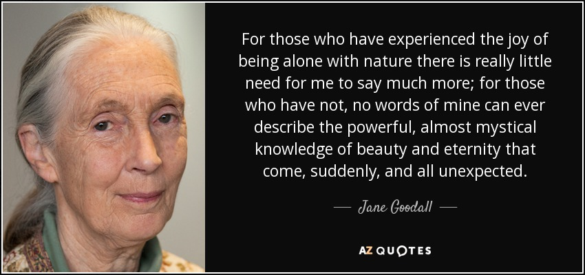 For those who have experienced the joy of being alone with nature there is really little need for me to say much more; for those who have not, no words of mine can ever describe the powerful, almost mystical knowledge of beauty and eternity that come, suddenly, and all unexpected. - Jane Goodall