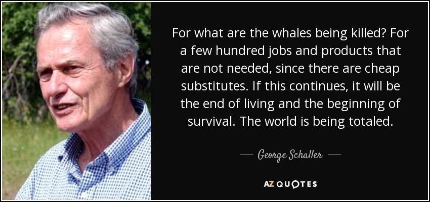 For what are the whales being killed? For a few hundred jobs and products that are not needed, since there are cheap substitutes. If this continues, it will be the end of living and the beginning of survival. The world is being totaled. - George Schaller
