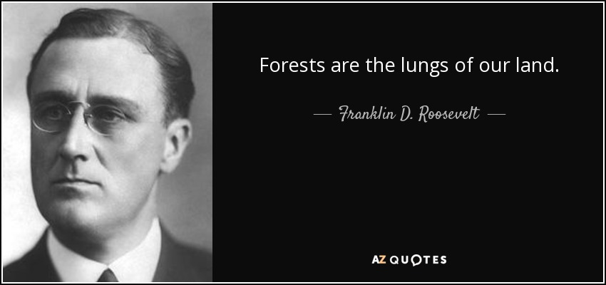 Forests are the lungs of our land. - Franklin D. Roosevelt