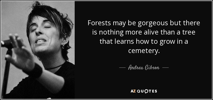 TOP 25 CEMETERY QUOTES (of 200) | A-Z Quotes