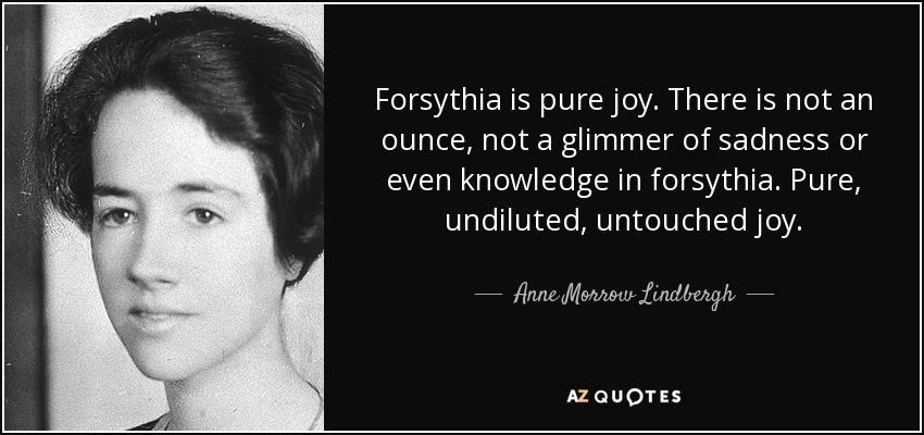 Forsythia is pure joy. There is not an ounce, not a glimmer of sadness or even knowledge in forsythia. Pure, undiluted, untouched joy. - Anne Morrow Lindbergh