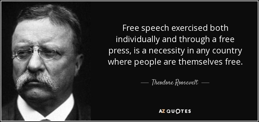 Free speech exercised both individually and through a free press, is a necessity in any country where people are themselves free. - Theodore Roosevelt