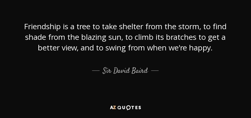Friendship is a tree to take shelter from the storm, to find shade from the blazing sun, to climb its bratches to get a better view, and to swing from when we're happy. - Sir David Baird, 1st Baronet