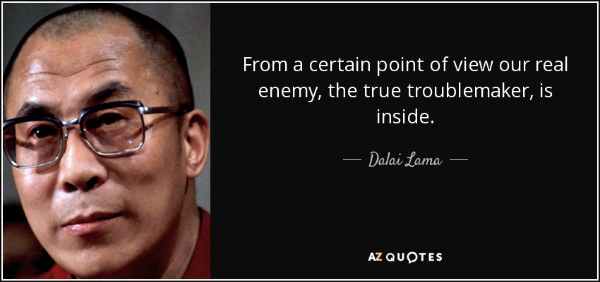 From a certain point of view our real enemy, the true troublemaker, is inside. - Dalai Lama