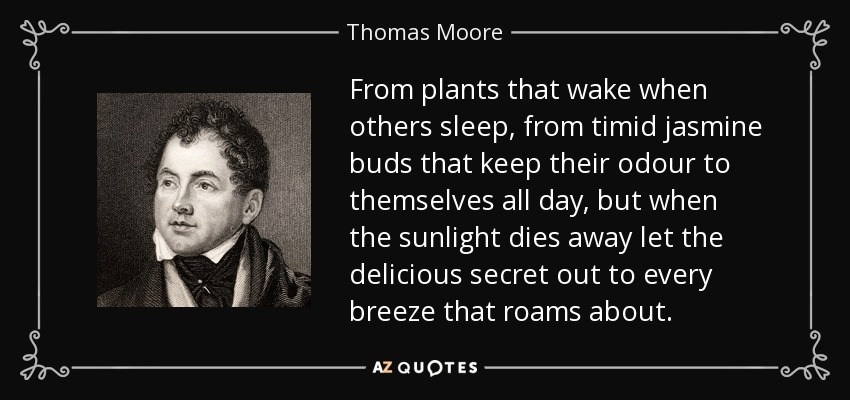 From plants that wake when others sleep, from timid jasmine buds that keep their odour to themselves all day, but when the sunlight dies away let the delicious secret out to every breeze that roams about. - Thomas Moore