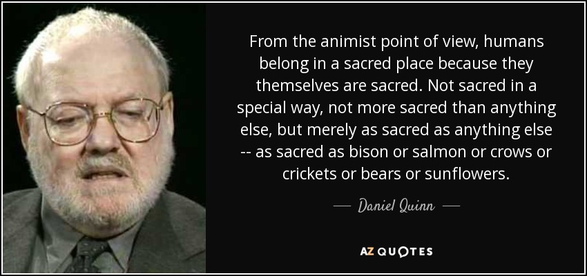 From the animist point of view, humans belong in a sacred place because they themselves are sacred. Not sacred in a special way, not more sacred than anything else, but merely as sacred as anything else -- as sacred as bison or salmon or crows or crickets or bears or sunflowers. - Daniel Quinn