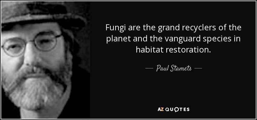 Fungi are the grand recyclers of the planet and the vanguard species in habitat restoration. - Paul Stamets