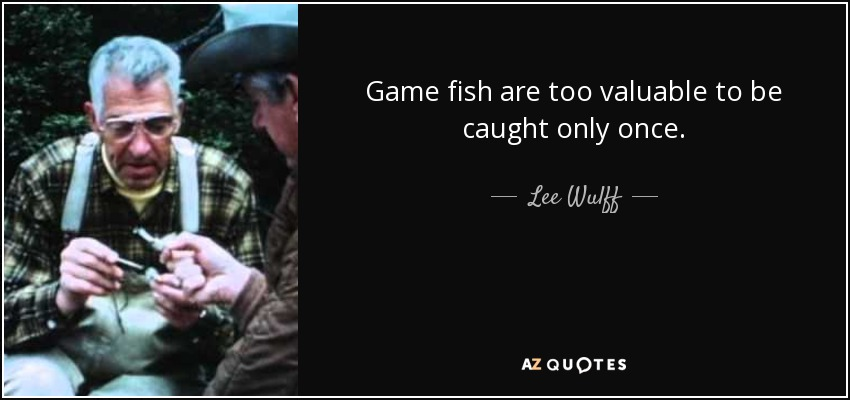 Game fish are too valuable to be caught only once. - Lee Wulff