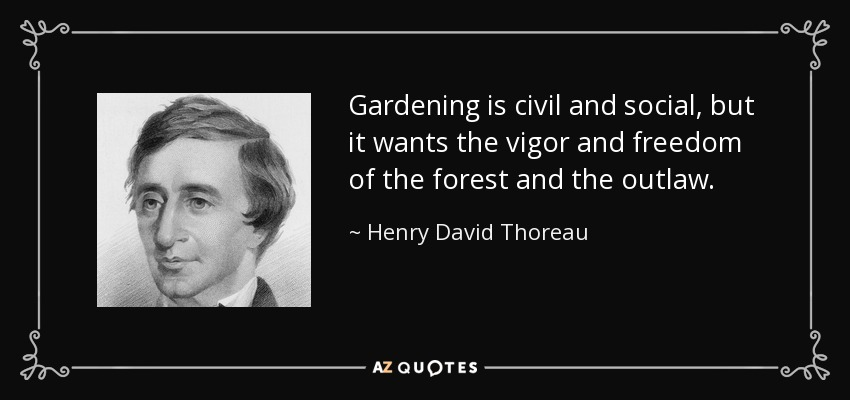 Gardening is civil and social, but it wants the vigor and freedom of the forest and the outlaw. - Henry David Thoreau