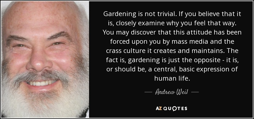 Gardening is not trivial. If you believe that it is, closely examine why you feel that way. You may discover that this attitude has been forced upon you by mass media and the crass culture it creates and maintains. The fact is, gardening is just the opposite - it is, or should be, a central, basic expression of human life. - Andrew Weil