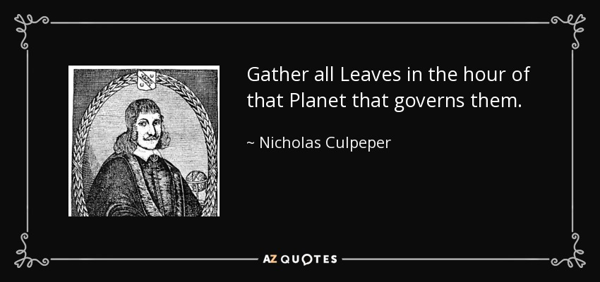 Gather all Leaves in the hour of that Planet that governs them. - Nicholas Culpeper