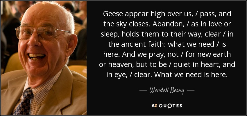 Geese appear high over us, / pass, and the sky closes. Abandon, / as in love or sleep, holds them to their way, clear / in the ancient faith: what we need / is here. And we pray, not / for new earth or heaven, but to be / quiet in heart, and in eye, / clear. What we need is here. - Wendell Berry