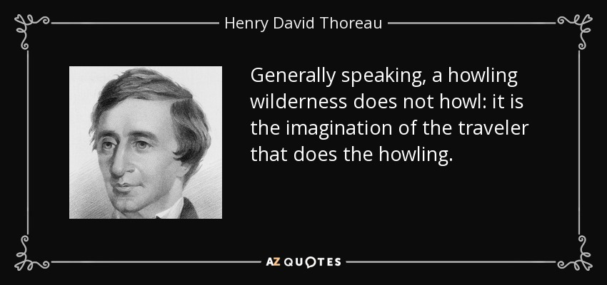 Generally speaking, a howling wilderness does not howl: it is the imagination of the traveler that does the howling. - Henry David Thoreau