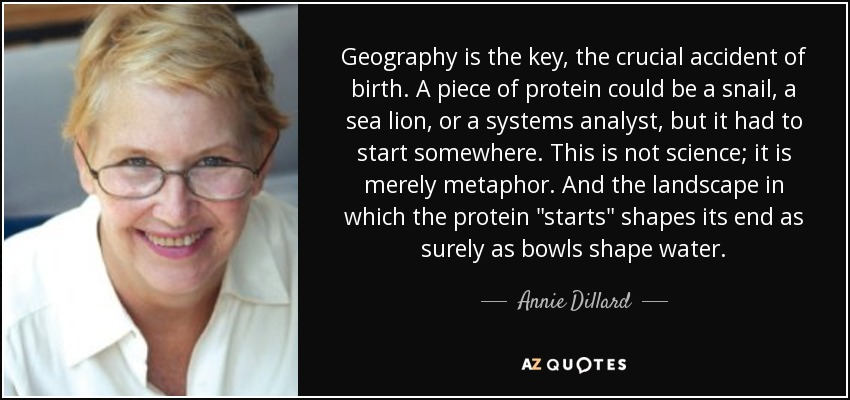 Geography is the key, the crucial accident of birth. A piece of protein could be a snail, a sea lion, or a systems analyst, but it had to start somewhere. This is not science; it is merely metaphor. And the landscape in which the protein