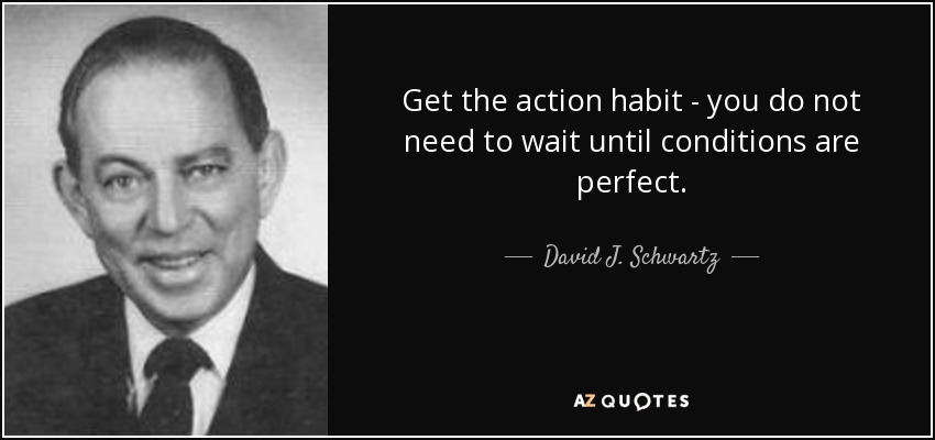 Get the action habit - you do not need to wait until conditions are perfect. - David J. Schwartz
