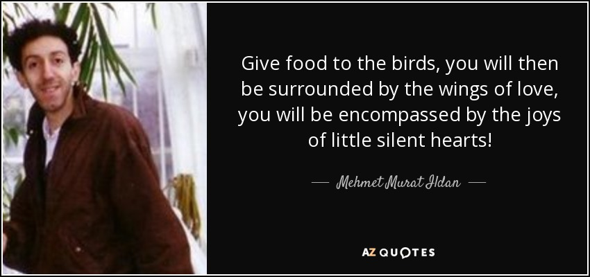 Give food to the birds, you will then be surrounded by the wings of love, you will be encompassed by the joys of little silent hearts! - Mehmet Murat Ildan