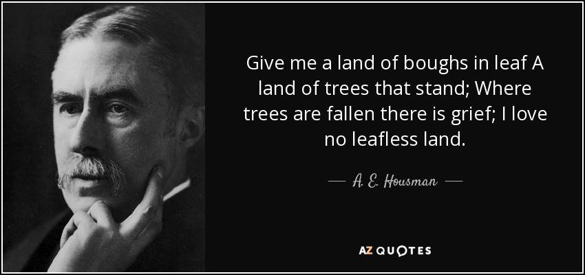 Give me a land of boughs in leaf A land of trees that stand; Where trees are fallen there is grief; I love no leafless land. - A. E. Housman