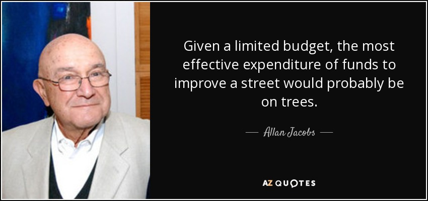 Given a limited budget, the most effective expenditure of funds to improve a street would probably be on trees. - Allan Jacobs