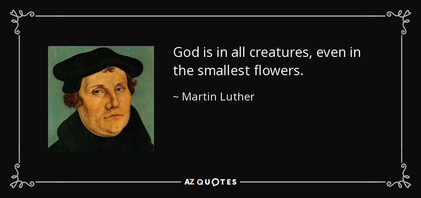 God is in all creatures, even in the smallest flowers. - Martin Luther