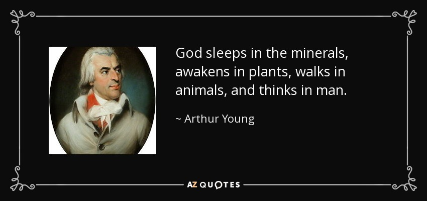 God sleeps in the minerals, awakens in plants, walks in animals, and thinks in man. - Arthur Young
