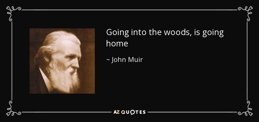 Going into the woods, is going home - John Muir