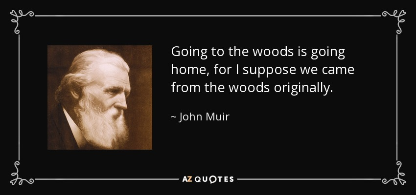 john muir quote going to the woods is going home for i suppose