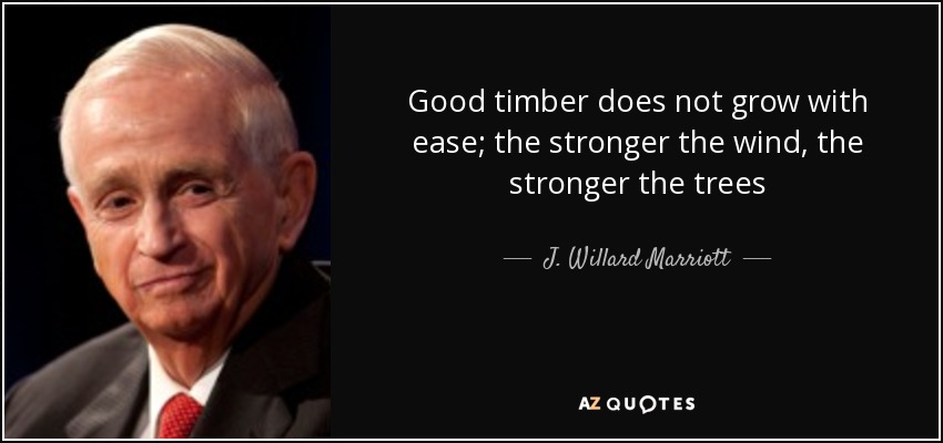 Good timber does not grow with ease; the stronger the wind, the stronger the trees - J. Willard Marriott