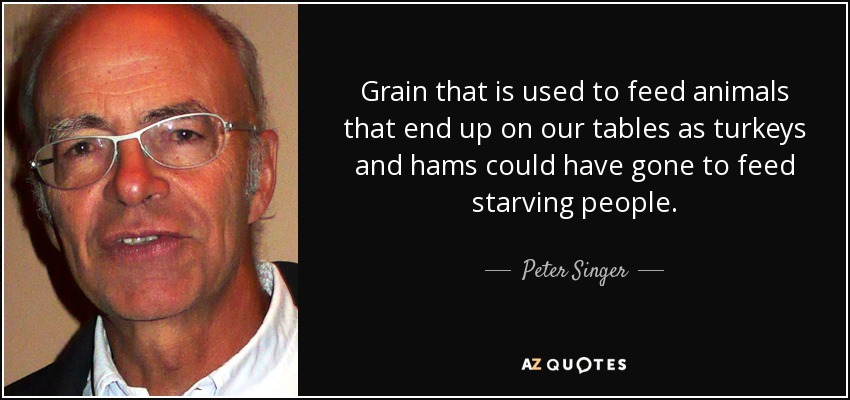 Grain that is used to feed animals that end up on our tables as turkeys and hams could have gone to feed starving people. - Peter Singer
