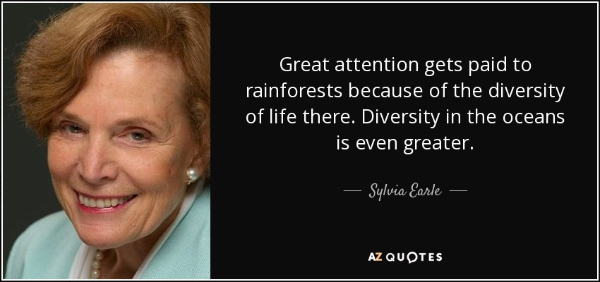 Great attention gets paid to rainforests because of the diversity of life there. Diversity in the oceans is even greater. - Sylvia Earle