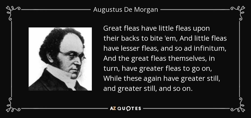 Great fleas have little fleas upon their backs to bite 'em, And little fleas have lesser fleas, and so ad infinitum, And the great fleas themselves, in turn, have greater fleas to go on, While these again have greater still, and greater still, and so on. - Augustus De Morgan