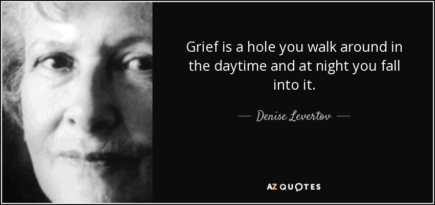 Grief is a hole you walk around in the daytime and at night you fall into it. - Denise Levertov