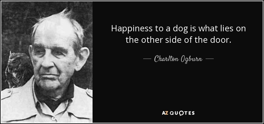 Happiness to a dog is what lies on the other side of the door. - Charlton Ogburn