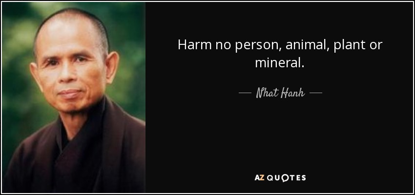 Harm no person, animal, plant or mineral. - Nhat Hanh