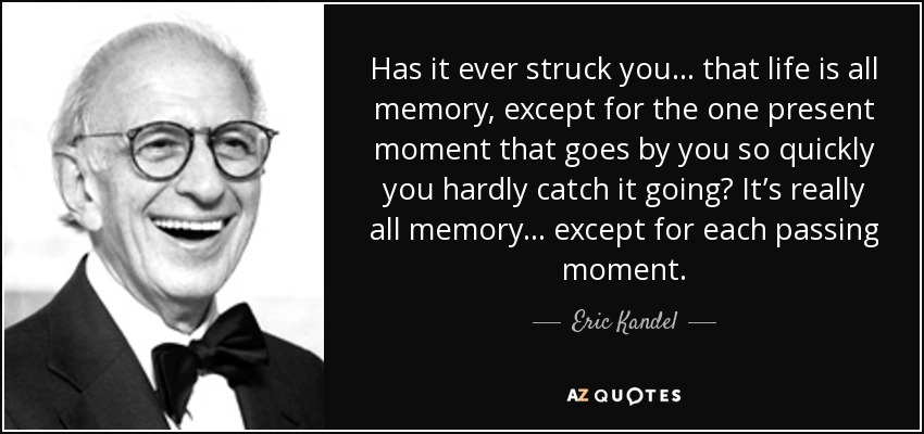 Has it ever struck you ... that life is all memory, except for the one present moment that goes by you so quickly you hardly catch it going? It's really all memory ... except for each passing moment. - Eric Kandel