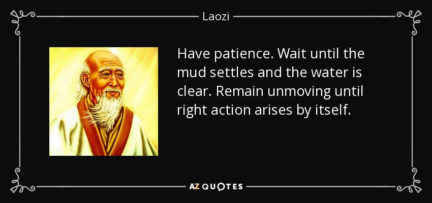 Have patience. Wait until the mud settles and the water is clear. Remain unmoving until right action arises by itself. - Laozi