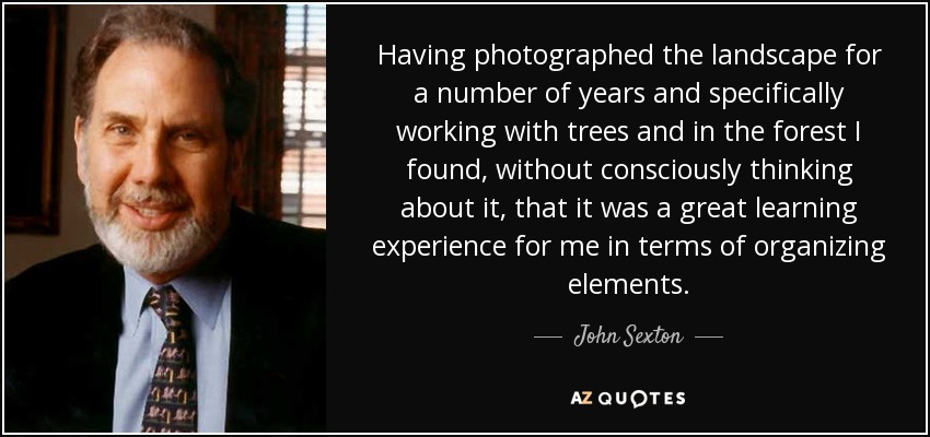 Having photographed the landscape for a number of years and specifically working with trees and in the forest I found, without consciously thinking about it, that it was a great learning experience for me in terms of organizing elements. - John Sexton