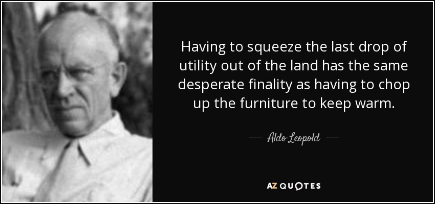 Having to squeeze the last drop of utility out of the land has the same desperate finality as having to chop up the furniture to keep warm. - Aldo Leopold