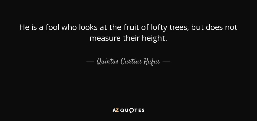 He is a fool who looks at the fruit of lofty trees, but does not measure their height. - Quintus Curtius Rufus