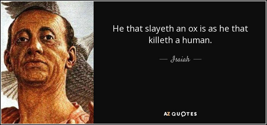 He that slayeth an ox is as he that killeth a human. - Isaiah