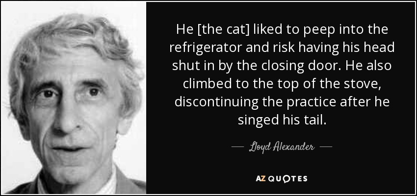 He [the cat] liked to peep into the refrigerator and risk having his head shut in by the closing door. He also climbed to the top of the stove, discontinuing the practice after he singed his tail. - Lloyd Alexander