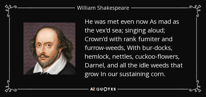 He was met even now As mad as the vex'd sea; singing aloud; Crown'd with rank fumiter and furrow-weeds, With bur-docks, hemlock, nettles, cuckoo-flowers, Darnel, and all the idle weeds that grow In our sustaining corn. - William Shakespeare