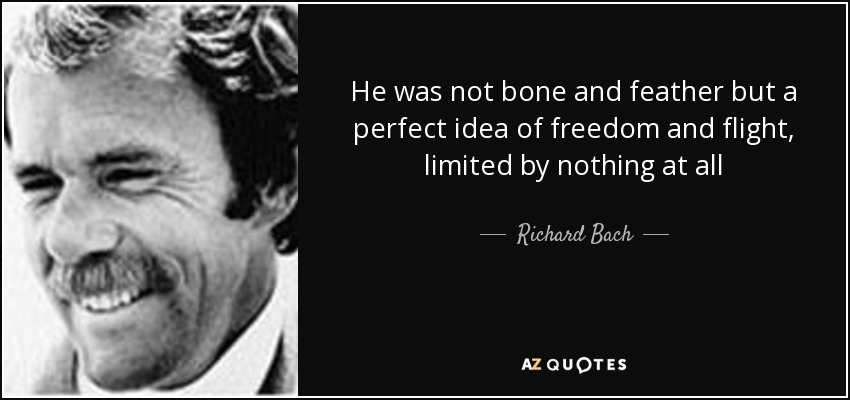He was not bone and feather but a perfect idea of freedom and flight, limited by nothing at all - Richard Bach
