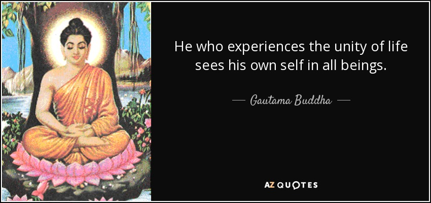 He who experiences the unity of life sees his own self in all beings. - Gautama Buddha