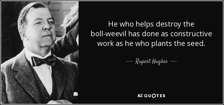 He who helps destroy the boll-weevil has done as constructive work as he who plants the seed. - Rupert Hughes
