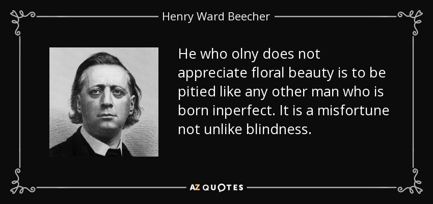 He who olny does not appreciate floral beauty is to be pitied like any other man who is born inperfect. It is a misfortune not unlike blindness. - Henry Ward Beecher