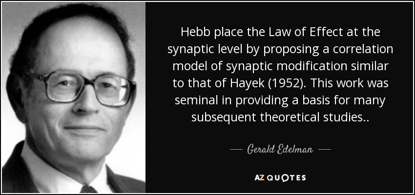 Hebb place the Law of Effect at the synaptic level by proposing a correlation model of synaptic modification similar to that of Hayek (1952). This work was seminal in providing a basis for many subsequent theoretical studies . . - Gerald Edelman