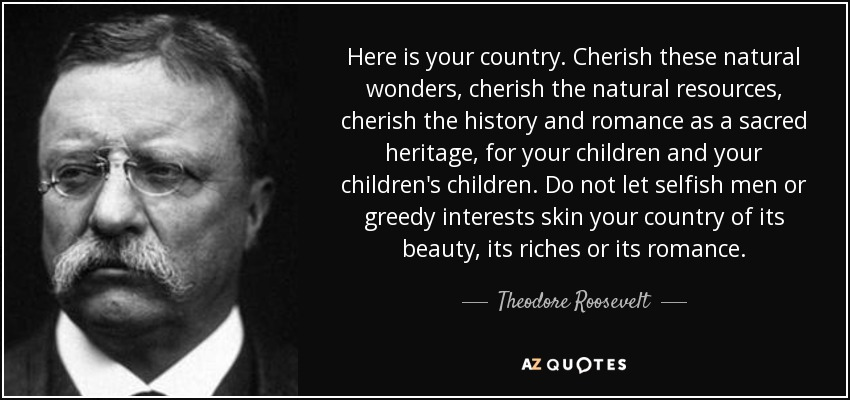 Here is your country. Cherish these natural wonders, cherish the natural resources, cherish the history and romance as a sacred heritage, for your children and your children's children. Do not let selfish men or greedy interests skin your country of its beauty, its riches or its romance. - Theodore Roosevelt
