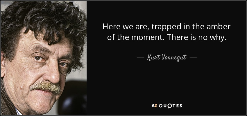 Here we are, trapped in the amber of the moment. There is no why. - Kurt Vonnegut