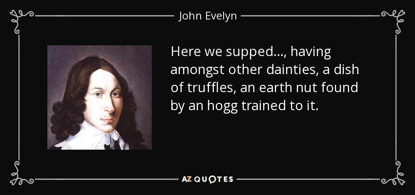 Here we supped . . ., having amongst other dainties, a dish of truffles, an earth nut found by an hogg trained to it. - John Evelyn